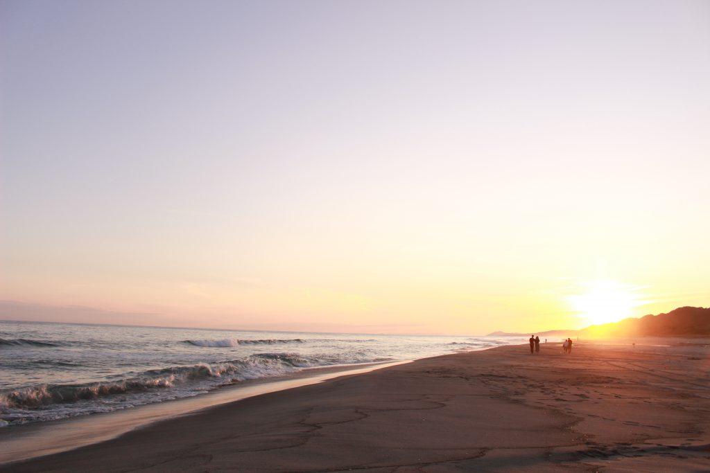 静岡の海とプラスチックを考える展 in みらいーら